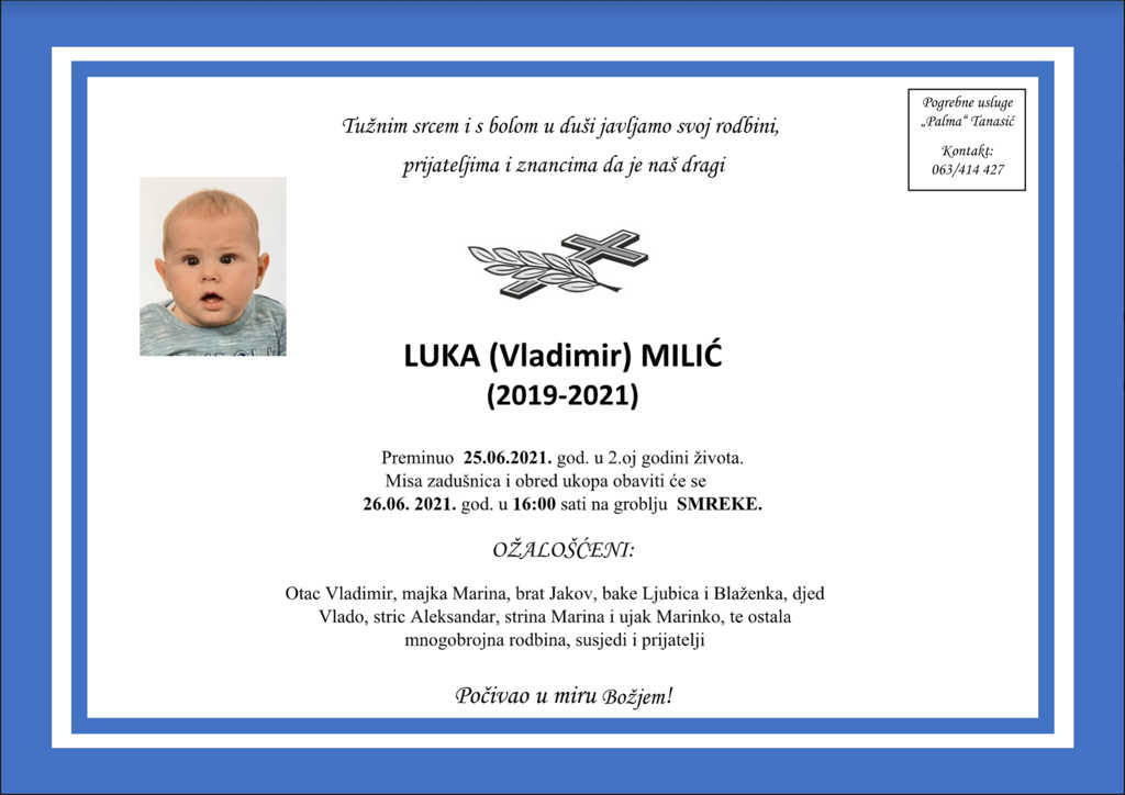Read more about the article Luka (Vladimir) Milić
